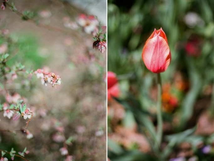 Atlanta Film Photographer - Fine art - flowers - husband and wife wedding photography team